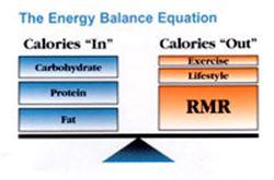 Aprende a empezar Metabolismo y nutricion